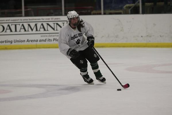 Ian Holt Memorial Hockey Game 2010