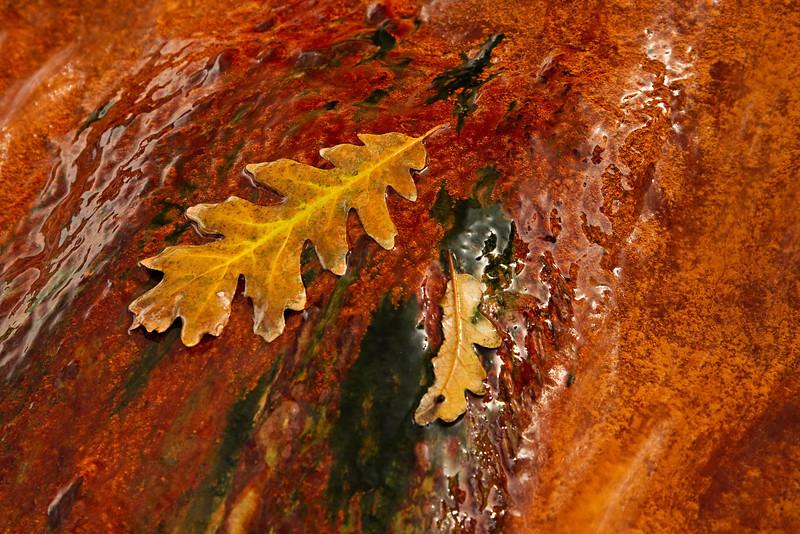 orange mineral 2.jpg