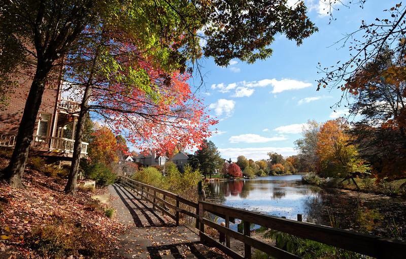 Fall colors and trail at Lake Newport