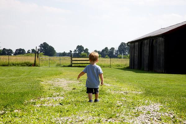 Cravens Farm - June 2010