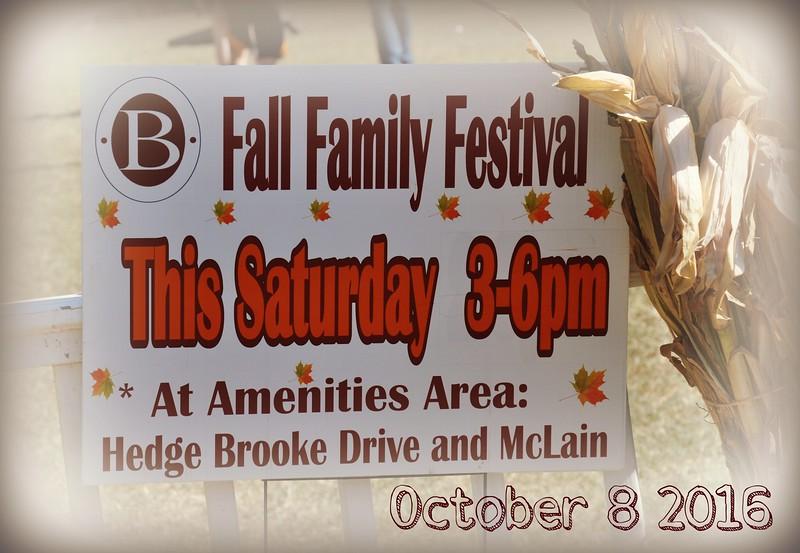 Brookstone 1 HOA - Fall Festival 2016