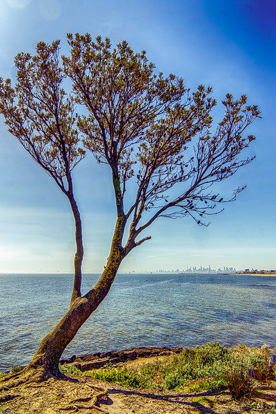 Day Trips to Pt Phillip Bay