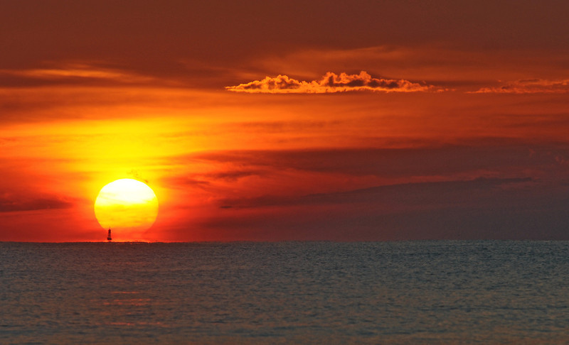 SCOPe_Huntington Beach State Park OCT 2012_13.jpg