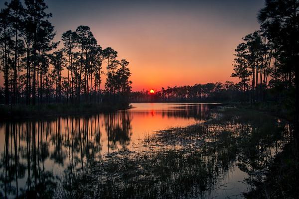 Everglades and south Florida