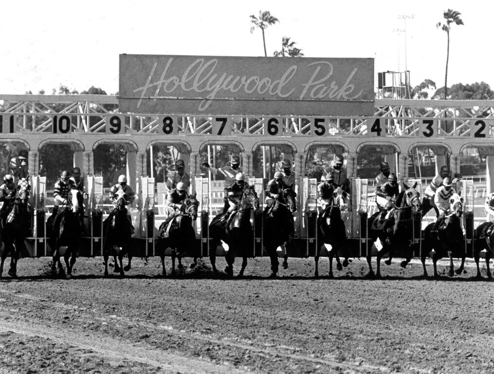 . Horse racing at Hollywood Park in June 1989.   (Los Angeles Daily News file photo)