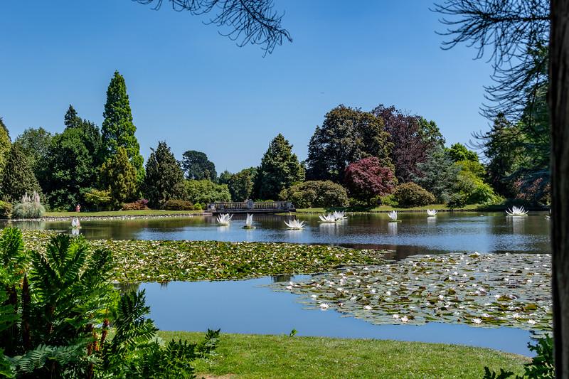 Sheffield Park Gardens (13 of 172).jpg