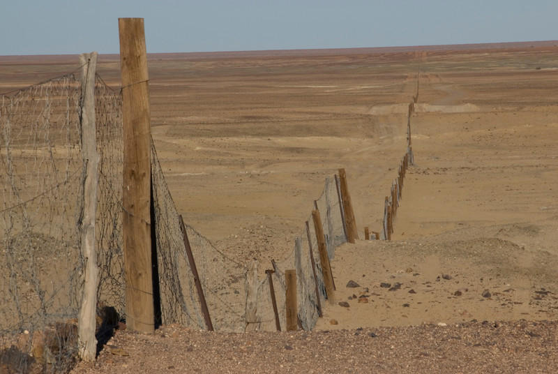 Dog Fence 1 - Coober Pedy, South Australia