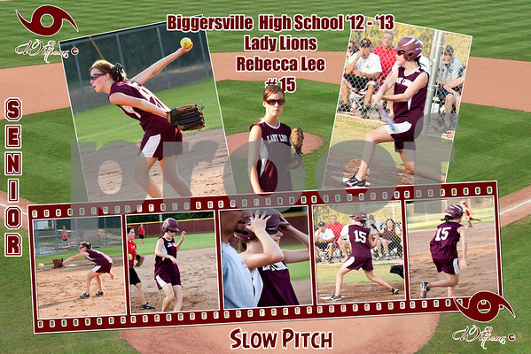 Softball: Slow Pitch Posters (2012 - 2013)