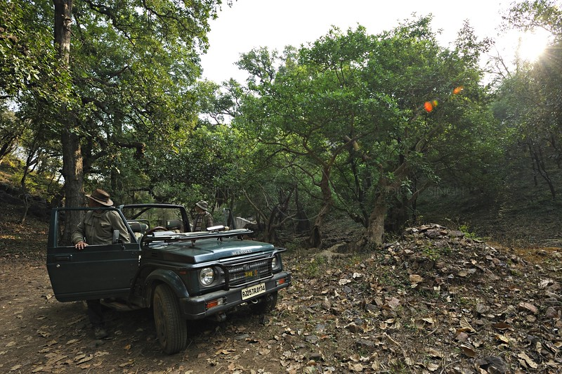 A tourist safari vehicle in Ranthambhore national park