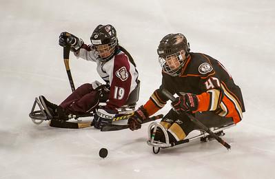 San Diego Ducks Sled Hockey