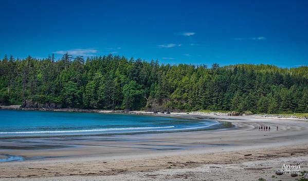 2020 Vancouver Island North