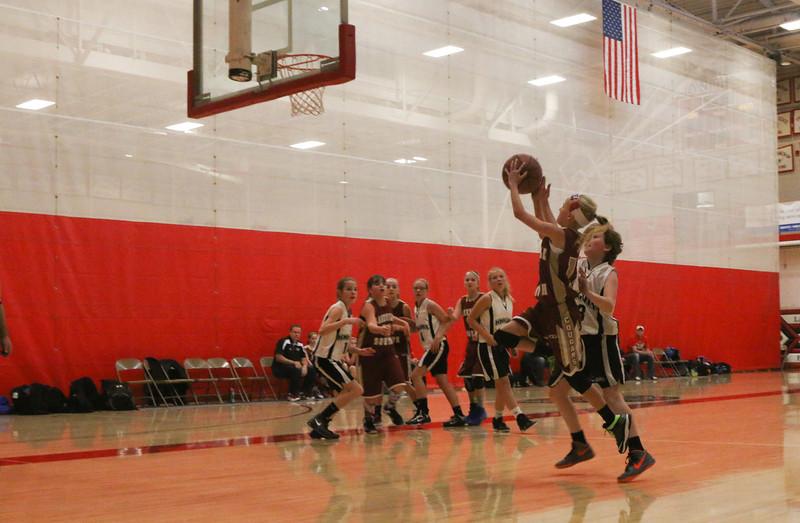 Lakeville North Tournament-4.jpg