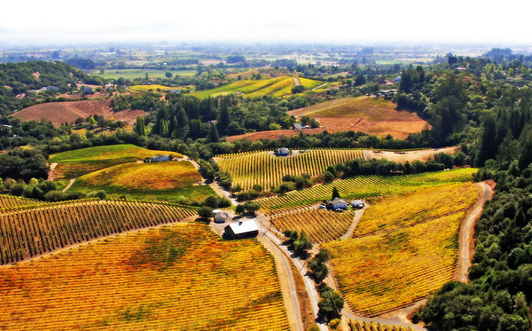 BIM over wine country, a slow flight over the vineyards