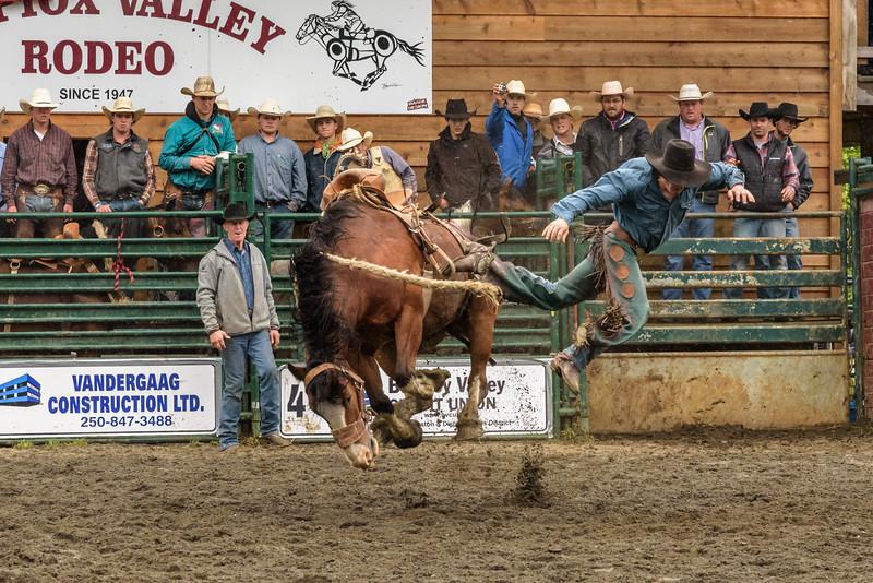 Kispiox Rodeo.jpg