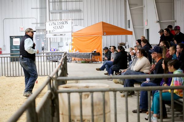 Oklahoma Beef Expo Showmanship 2021
