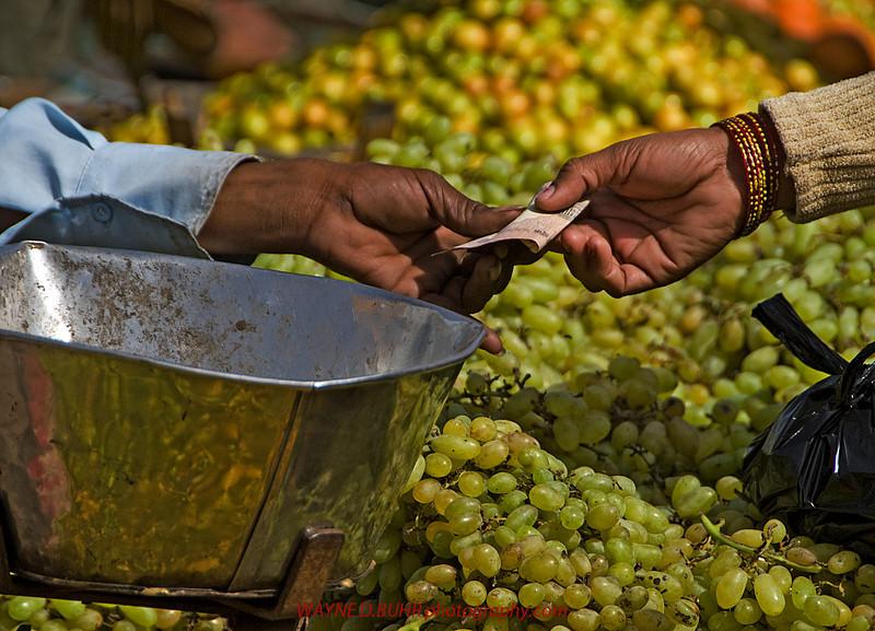 India2010-0211A-478A.jpg