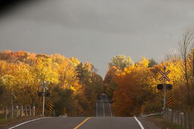 ON, Caledon Fall Colours