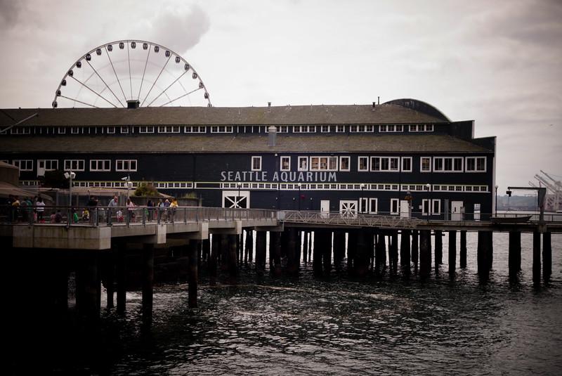 Seattle Aquarium and the Great Wheel