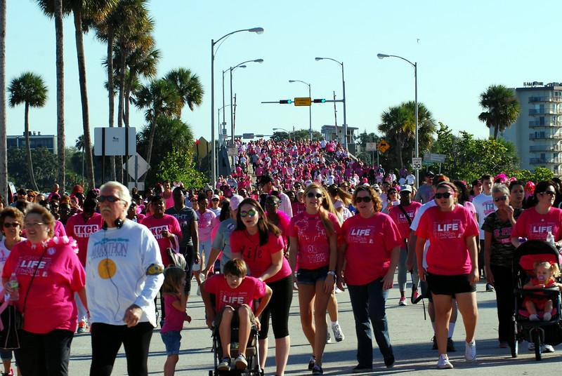 2014 Making Strides Against Breast Cancer in Daytona Beach (300).JPG
