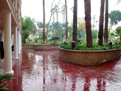 29 Rain in Luxor