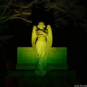 Woodlawn Illuminated Angels 2020