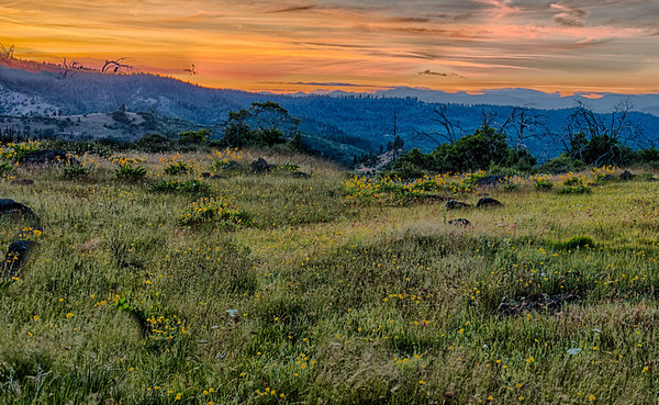 Land Prom Mosier; Oregon;