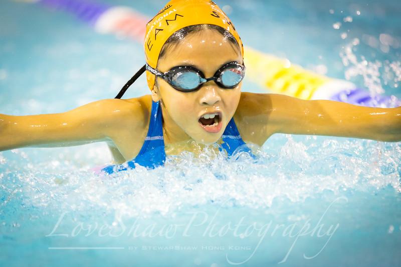 HWI Swim Meet 10th Dec 2016-185