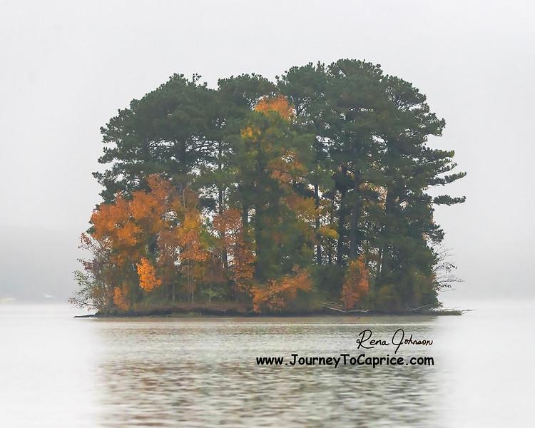 Island Fog in Autumn - 001Lg.jpg