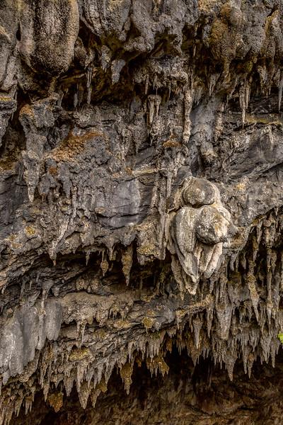 «Rawhiti Cave» in der Nähe von Motupipi