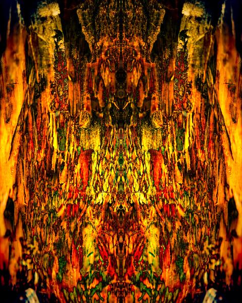 20210125-JAN_7846-mirror-1-6.jpg