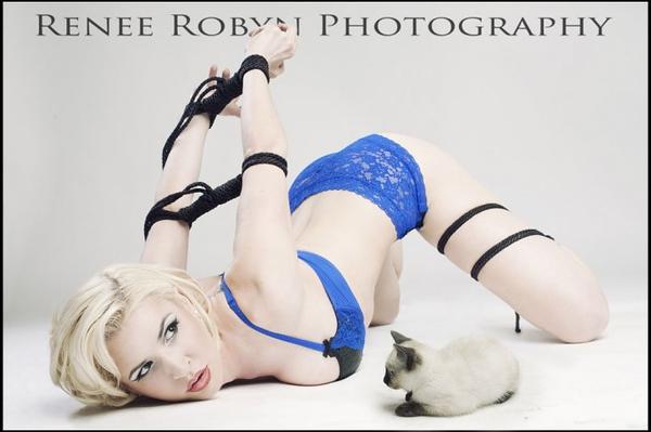 kitten-looking-at-joanie-tied-up-685x456.jpg