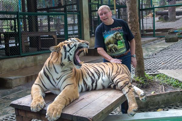 Tiger Kingdom, Chiang Mai, Thailand - December, 2017