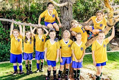 Emeralds Team Picture