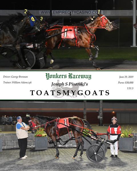 20190629 Race 9-Toatsmygoats.jpg