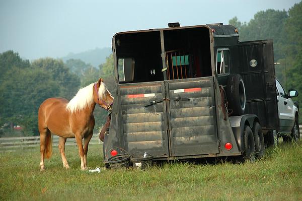 Rivermont Farm 2009