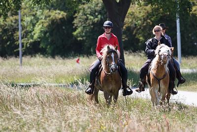Katwijk Paardrijden