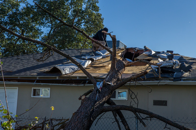 5671 Wallace Ave - Tree 1030am 12 16 2017 Extremly Windy Conditions-86.jpg