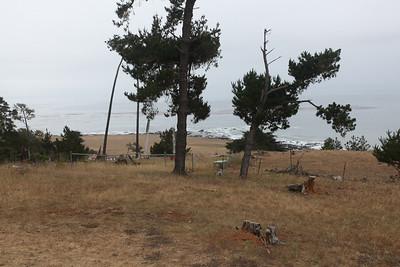 Nani's 75th - Camp Ocean Pines June 2009
