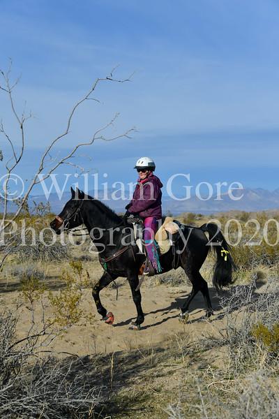 Endurance Rides 2020