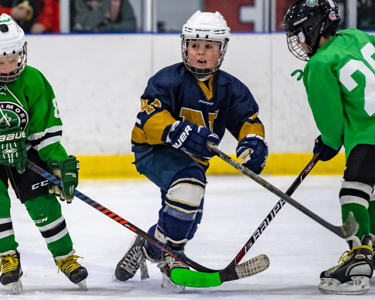 2019-02-03-Ryan-Naughton-Hockey-45.jpg