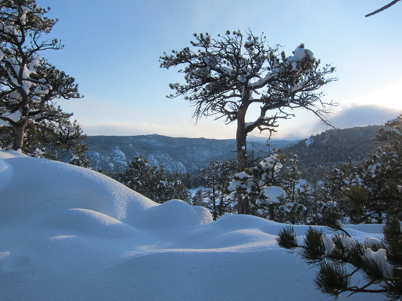 Looking toward Estes Park while snowshoeing above Raymond, CO.