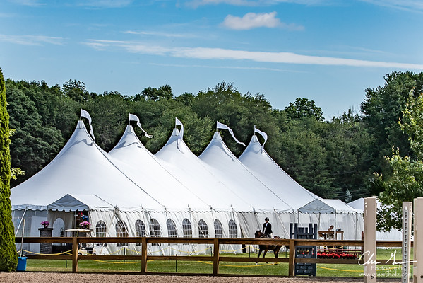 2018 FCHC June Charity Horse Show