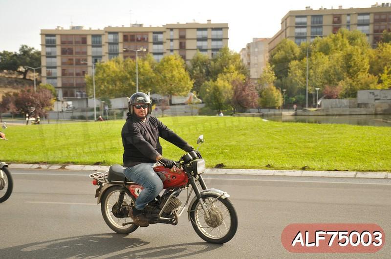 ALF75003.jpg