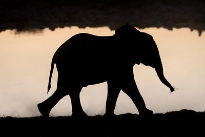 Namibia 2011(3)
