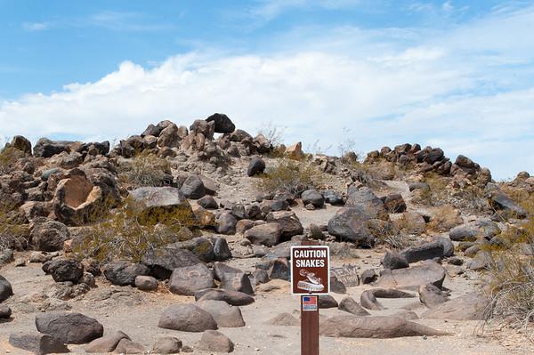 Painted Rocks Petroglyph Site