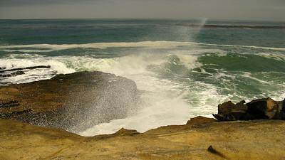 Santa Rosa Island July 2010