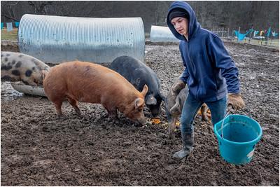 Zelenak Farm December 2018