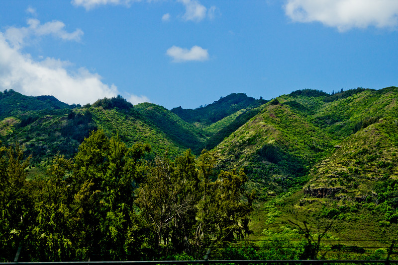 Journey into Oahu Photograph 108