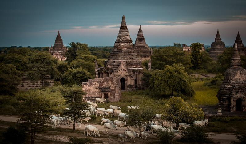 Mandalay Pagan Packet 7-nights
