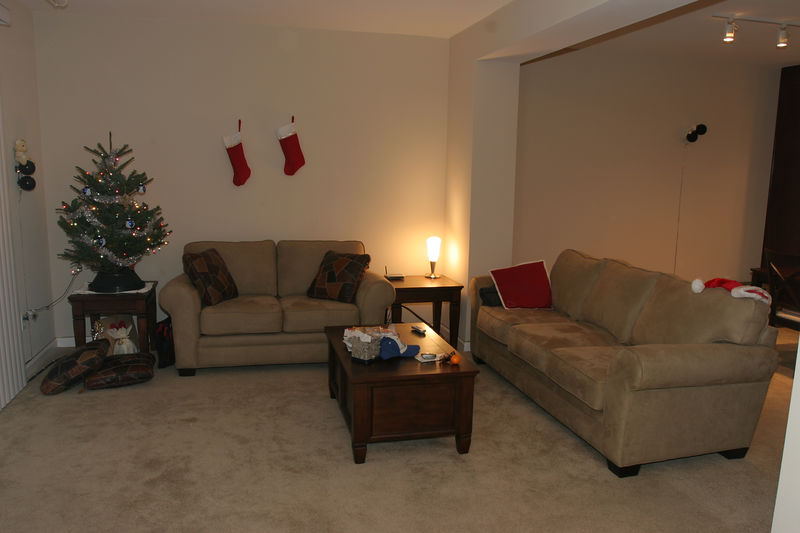 Here's the living room with our cool little Christmas tree.
